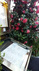 170329 La Closerie des Lilas - Menu et camélia en fleurs