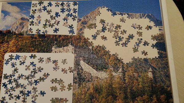 170330 La patience - puzzle le 29-03-17 chez odile et jean