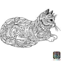 170504 Coloriage de chat