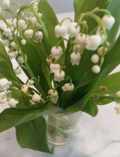 170505 Bouquet de muguet
