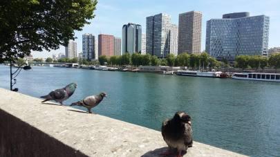 170511 Le Pont Mirabeau 3