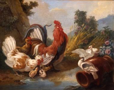 170529 Jean-Baptiste-Huet-le-plaisir-de-la-nature-_04
