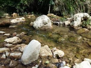 170612 Le ruisseau