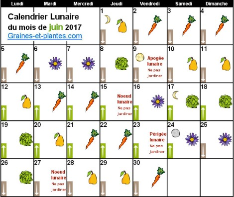 calendrier-lunaire-jardinage-juin2017-jardiner-avec-la-lune