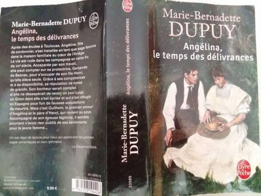 170712 Livre de Dupuy