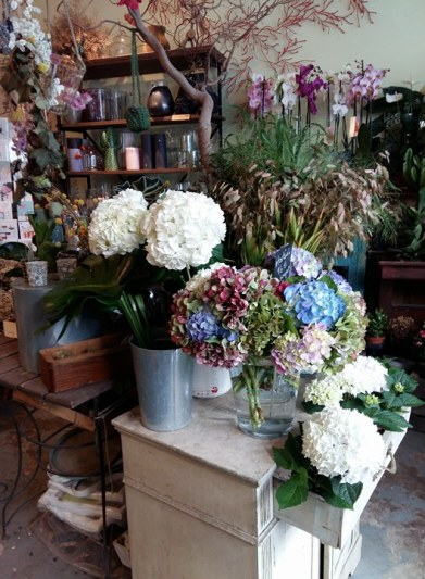 170906 Les fleurs de la rue Legendre 2